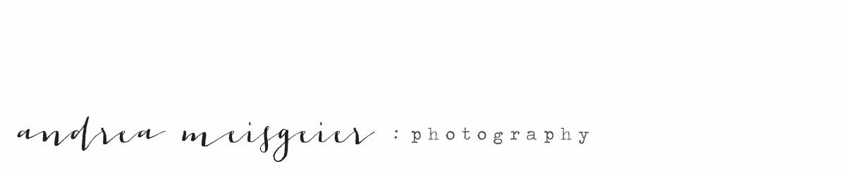 andrea meisgeier photography