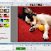 Picasa  is totally free photography viewing and editing computer software by Google that makes your pictures look fantastic.... Expressi...