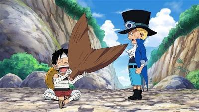 One Piece 495