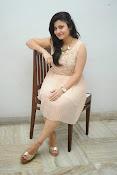 vaishali patel latest glamorous photos-thumbnail-19