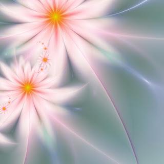 Fractal daisies