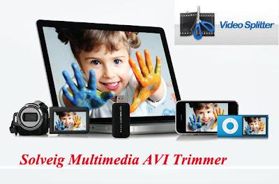 SolveigMM AVI Trimmer 2.0.1008.31 Portable