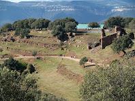 Restes de la Codina amb la nova explotació al darrere