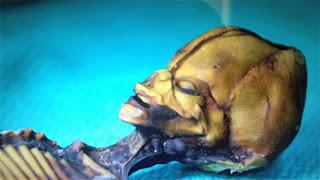 Múmia é encontrada no chile e possui 15 centímetros. Exame de Dna afirma ser humano.