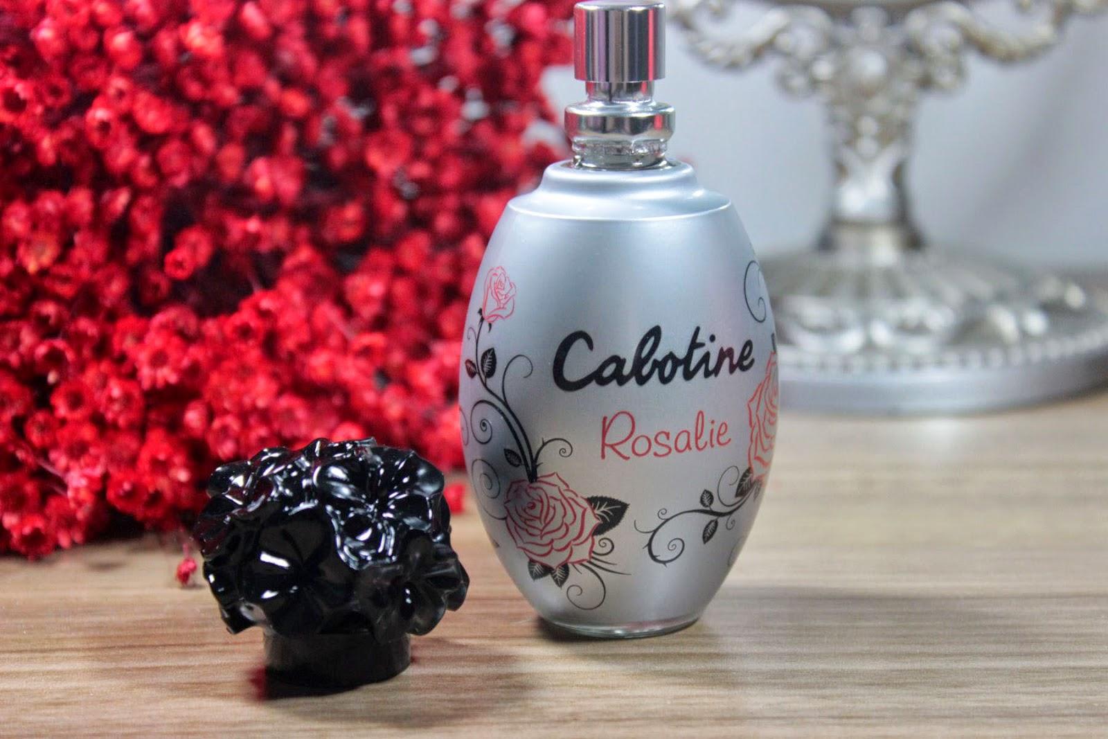eau de toilette, perfume, floral, cítrico, presente, sugestão, delicado