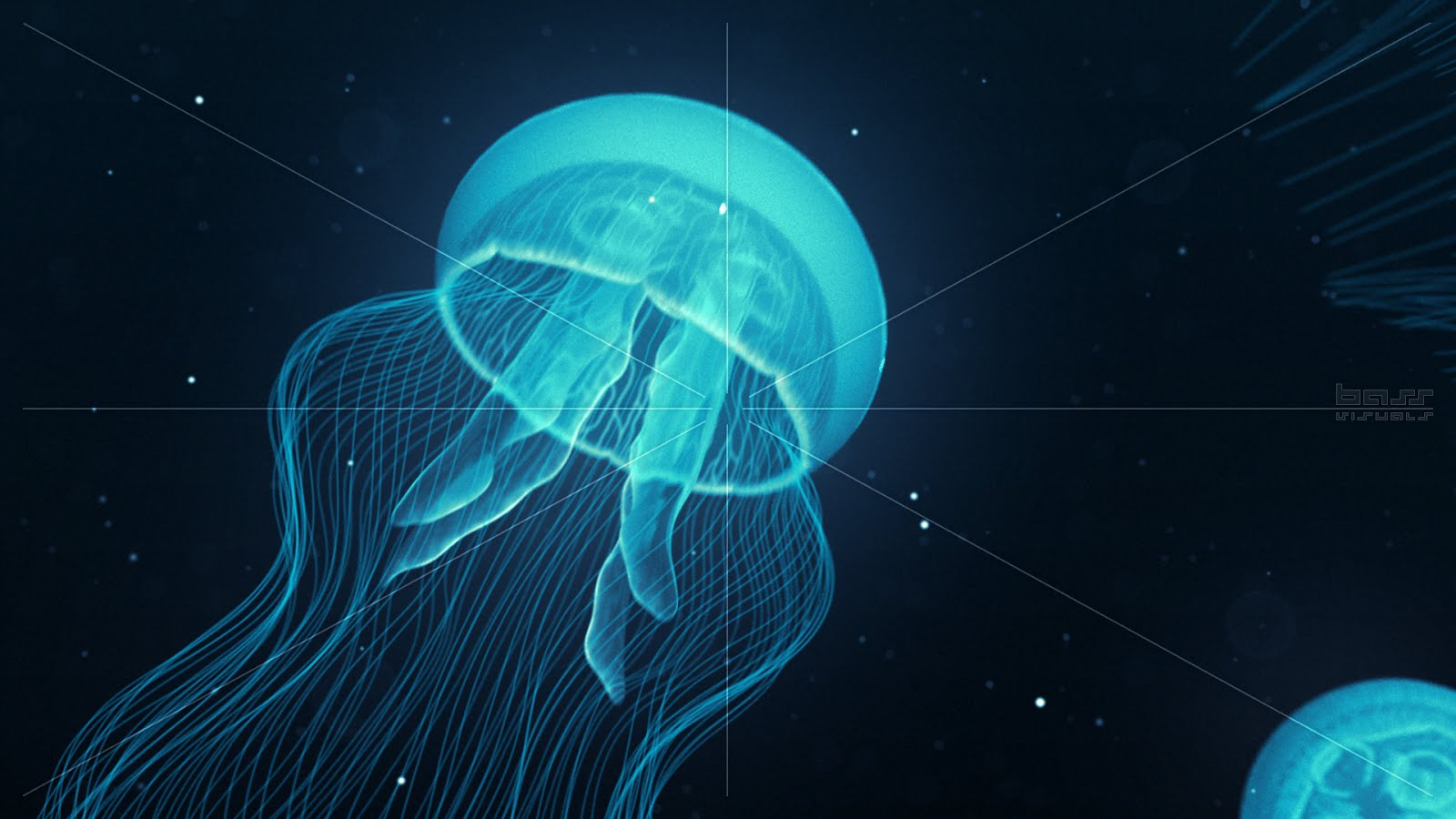 http://3.bp.blogspot.com/-r1jDsuzE6OA/UJ3bzdHKSBI/AAAAAAABjKc/vcoiwBFNIV4/s1600/Bass_Visuals_Jellyfish_Nightlights_Blue_HD_1920x1080_30p.jpg