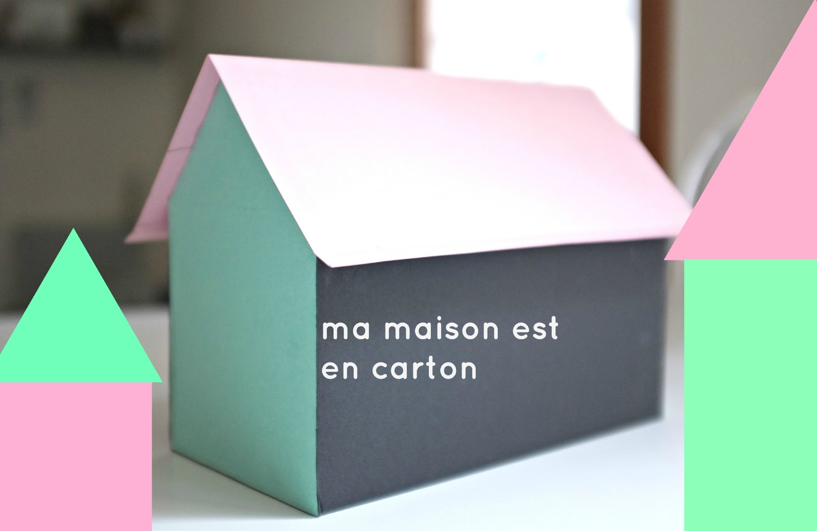 julie adore diy ma maison est en carton. Black Bedroom Furniture Sets. Home Design Ideas