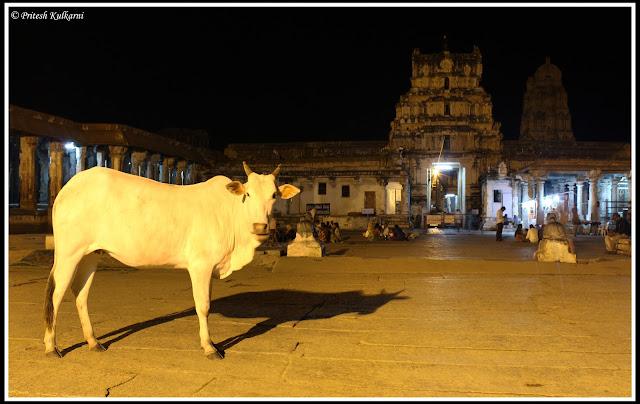 Virupaksha temple at night