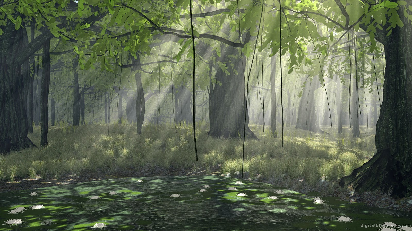 Green forest free hd desktop wallpaper