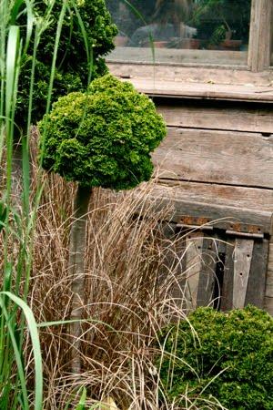 Alla människor behöver en trädgård