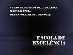 PRINCÍPIOS DE LIDERANÇA - DESENVOLVIMENTO PESSOAL