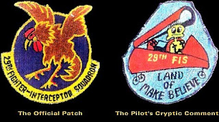29th FIS uniform patch & fake 29th FIS uniform patch