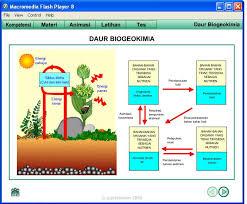 daur biogeokimia adalah