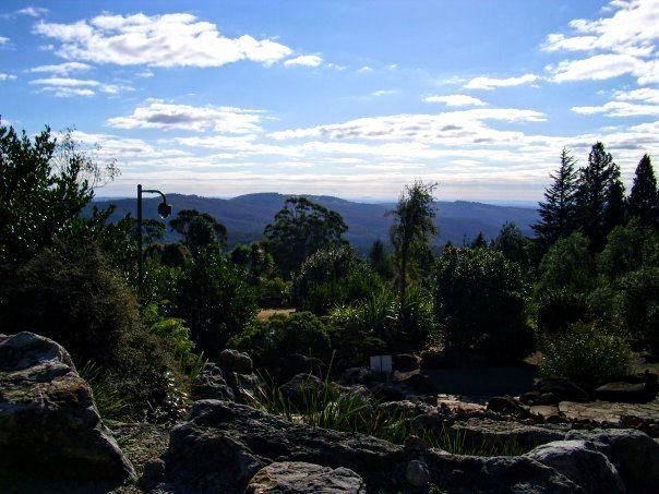 Mount Tomah Botanic Gardens Australia
