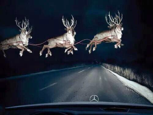 reindeer flying over the route