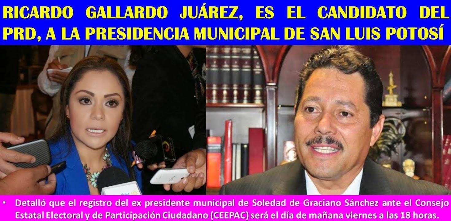 YA LLEGÓ EL GALLO GALLARDO, PARA LOS QUE ANDABAN PREGUNTANDO.......