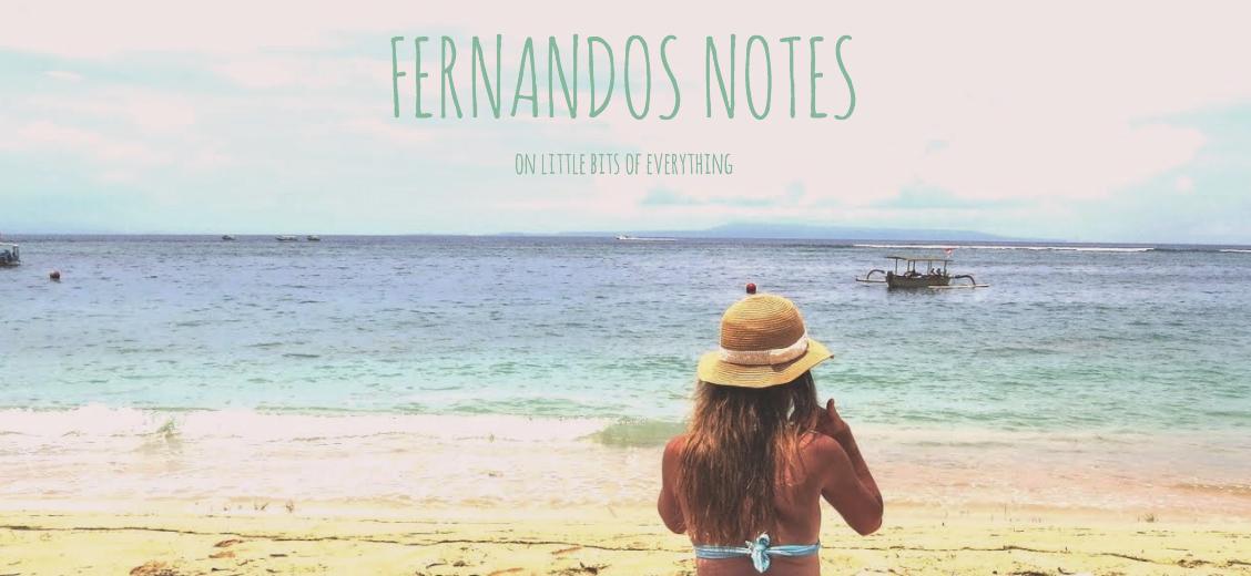 fernandos notes
