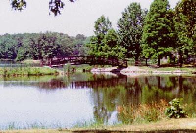 A Lake near McLeansboro, Illinois