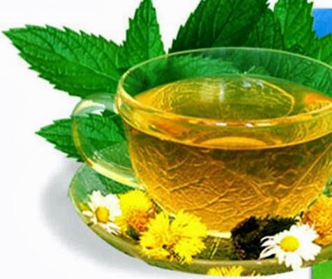 Целебные свойство зеленого чая