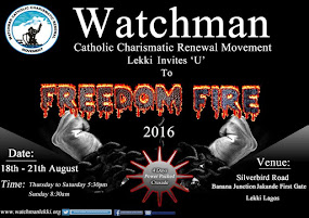FREEDOM FIRE 2016
