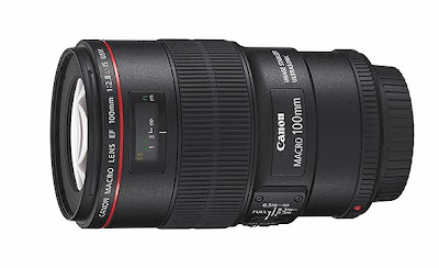 Canon 100mm f/2.8 IS USM Macro Lens