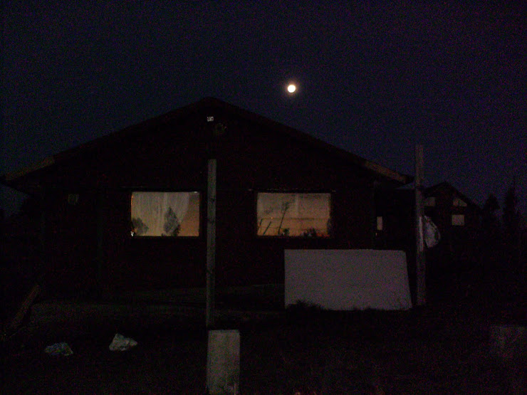 placida noche en la parcela