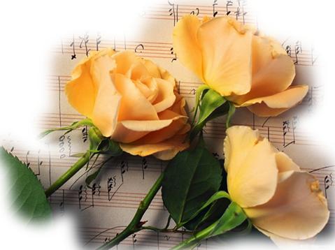lettre d 39 amour avec fleur lettre d 39 amour d claration d 39 amour image d 39 amour livre d 39 amour. Black Bedroom Furniture Sets. Home Design Ideas