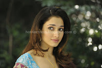 Tamanna, hot, milky, thigh, and, navel, show