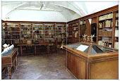 Biblioteca del museo