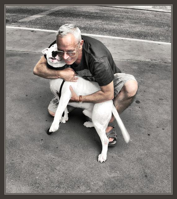 LLORET DE MAR-PERRO-LABRADOR-AMOR-ANIMALES-FOTOS-VIAJES-PINTURA-PINTOR-ERNEST DESCALS-