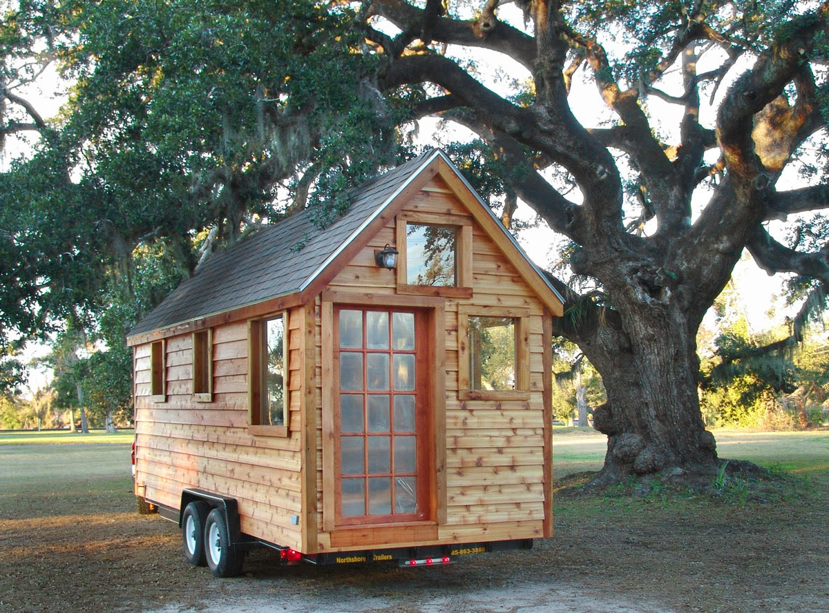Tiny House Under Tree