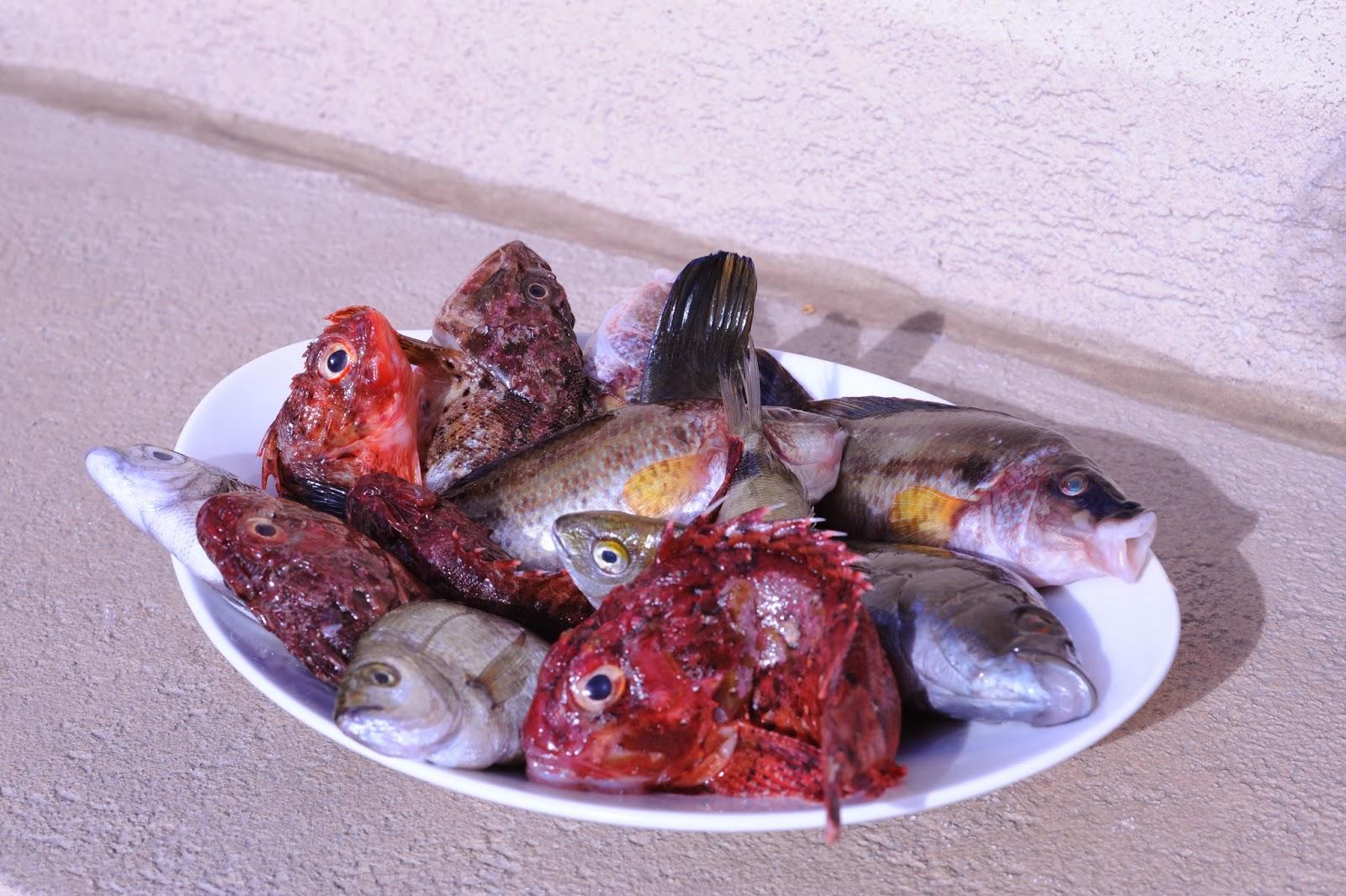 Du beau du bon marseille le vieux port la canebi re - Restaurant poisson marseille vieux port ...