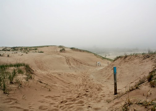 Surprise...sand dunes! And, lots of them!! So bummed I missed this. Hiker badge earned.