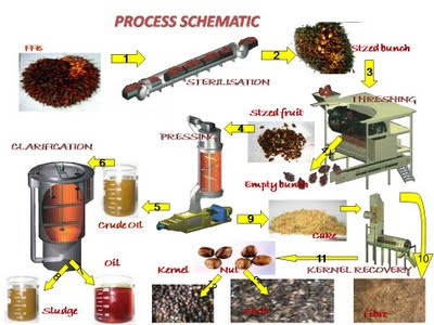 Sawit Industry Process Schematic At Palm Oil Mill Factory