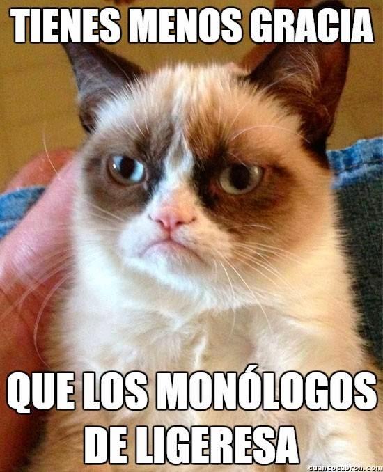 Grumpy Cat: Tienes menos gracia...