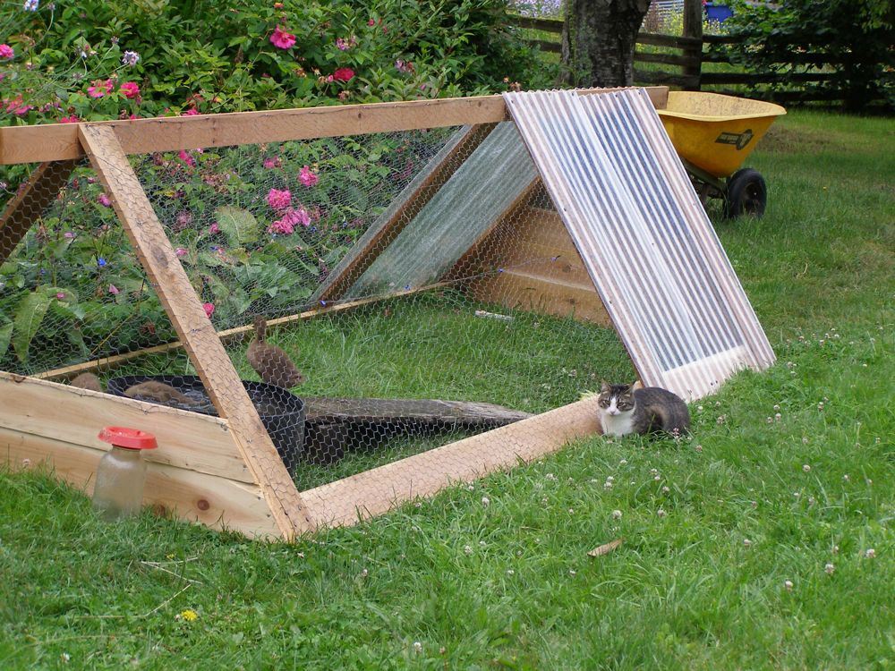 Simple Chicken Coop Plans For Solar Powered Coops as well Oldest Rabbit furthermore 341 as well Thomas Trackmaster Ben Train 4178 P in addition Garden Coop Building Plans Up To 8 Chickens P535. on pet duck pens