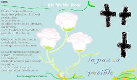 La Rosa Blanca