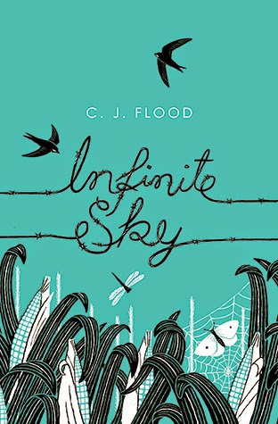 Infinite Sky book cover
