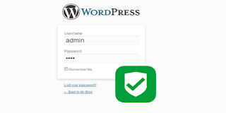 Secure wordpress login