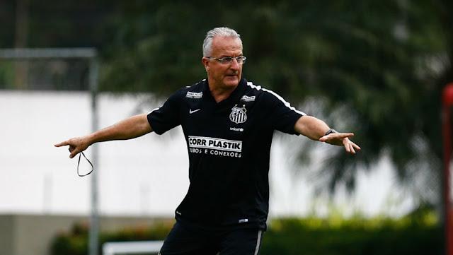 Dorival Junior ainda não vê Santos em situação tranquila no Campeonato Brasileiro (Foto: Ricardo Saibun/Santos FC)