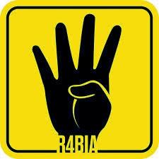 Support Mesir