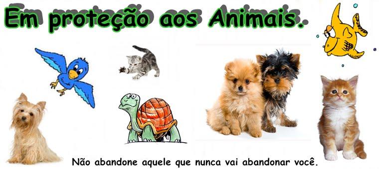 Em proteção aos animais!