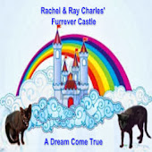 Rachael and Ray Charles Forever Castle