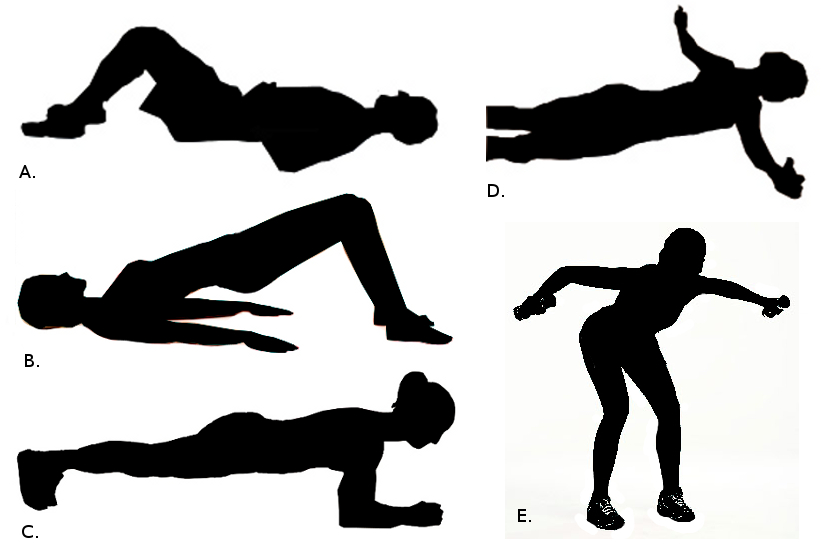 lower cross syndrome exercises pdf
