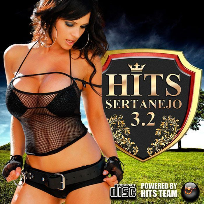 Hits Sertanejo 3.2 - VA