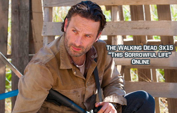 The Walking Dead 3x15 Online