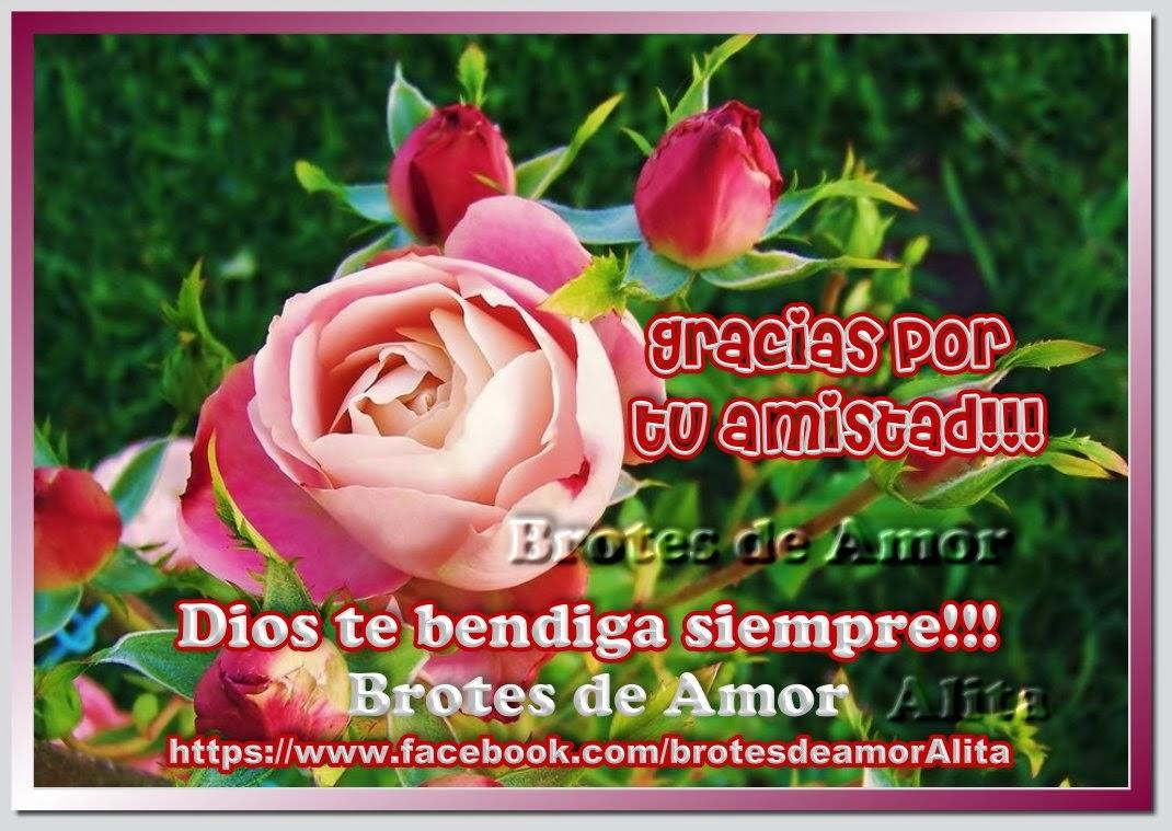 Rosas para Todos en Movimiento Día del Amor y la Amistad - Imagenes De Amistad Con Rosas