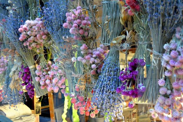 PhotowalkVLC - flores tienda SIMPLE