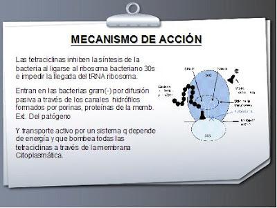 DIAPOSITIVA - TETRACICLINAS