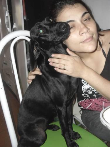 Esta é Julieta. Foi adotada por uma família que lhe dá carinho e atenção.